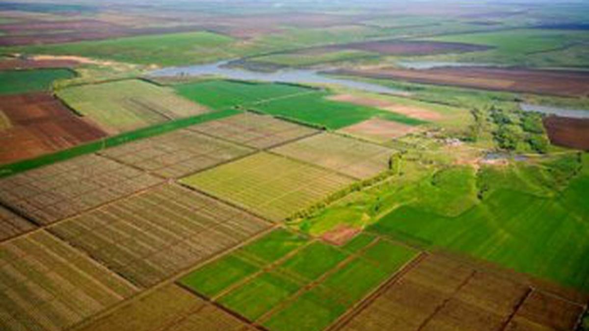 Фото: В Украине создан Государственный аграрный реестр