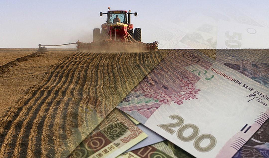 Фото: В Украине будет создан Государственный аграрный реестр